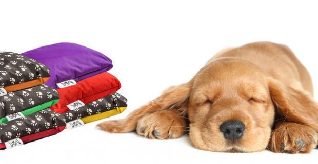 Kvalitný pelech pre vášho psieho miláčika, ktorý môžete mať nie len vo vnútri ale aj vonku. Na výber viac rozmerov a ešte viac farieb.