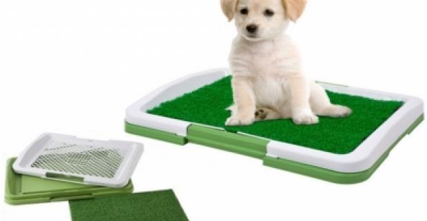 Trojdielna toaleta pre malé zvieratá Potty Trainer, podložka je odolná voči zápachom. Tácka s mriežkou na zachytenie tekutín.