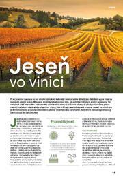 15. stránka Tesco letáku