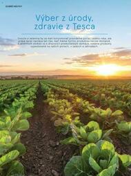76. stránka Tesco letáku